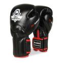 BB2 12 oz boxerské rukavice DBX BUSHIDO