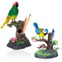 Mluvící papoušek nebo sýkorka 2v1